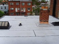 The roof at 31-81 after replacement: facing the garden